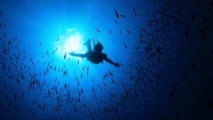ionian divers